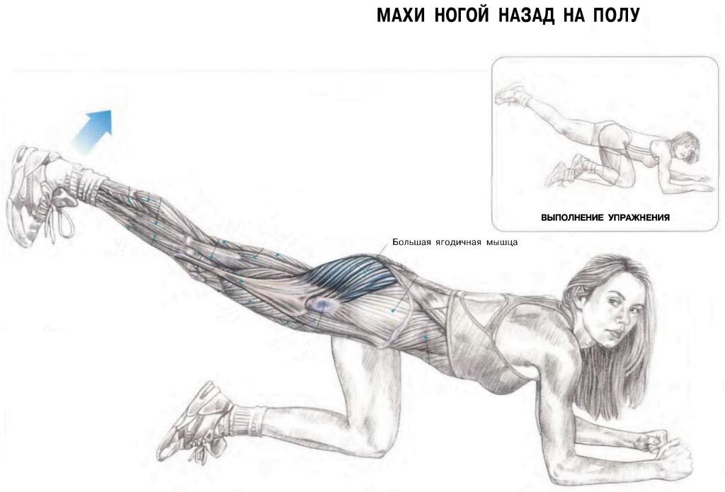 оторый упражнения для мышц ног в картинках негры, сказал