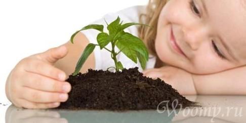 Опасность ядовитых растений для детей